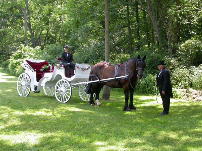 Location d'un carrosse par le wedding planner